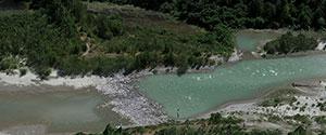 Heterogeneous Ecologies: Cascadia